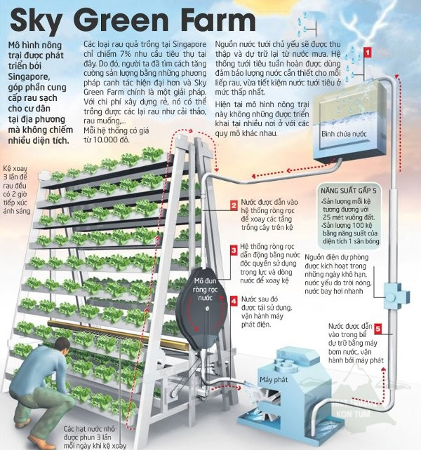 Sky Green Farm 1