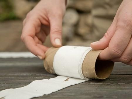 gieo hạt bằng giấy vệ sinh 7