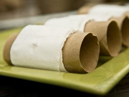 gieo hạt bằng giấy vệ sinh 8