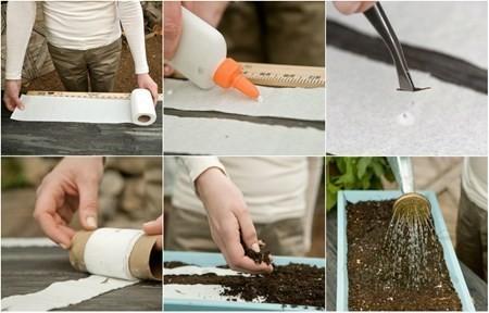 """Dưới đây là các bước """"hô biến"""" những cuộn giấy vệ sinh trở thành nơi để hạt nảy mầm"""