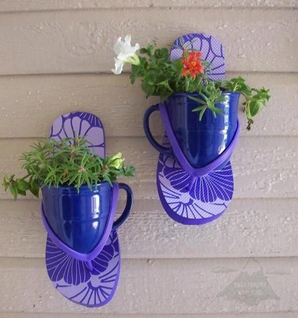 trồng hoa trên dép