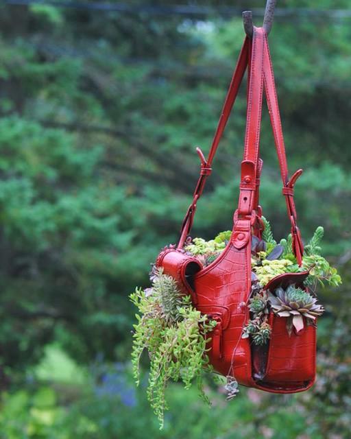 trồng hoa trong giỏ xách 1