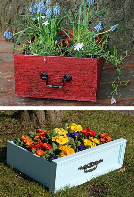 trồng hoa trong ngăn kệ 1