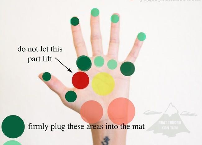 Bài tập cho tay khỏe