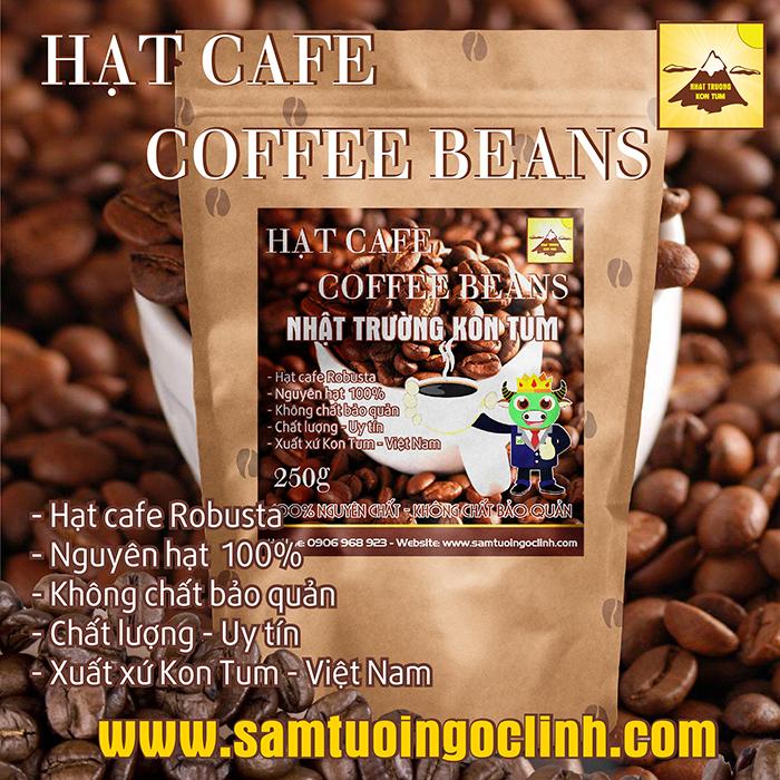 Hạt Cafe Robusta Kon Tum, Nguyên Chất Thơm Ngon