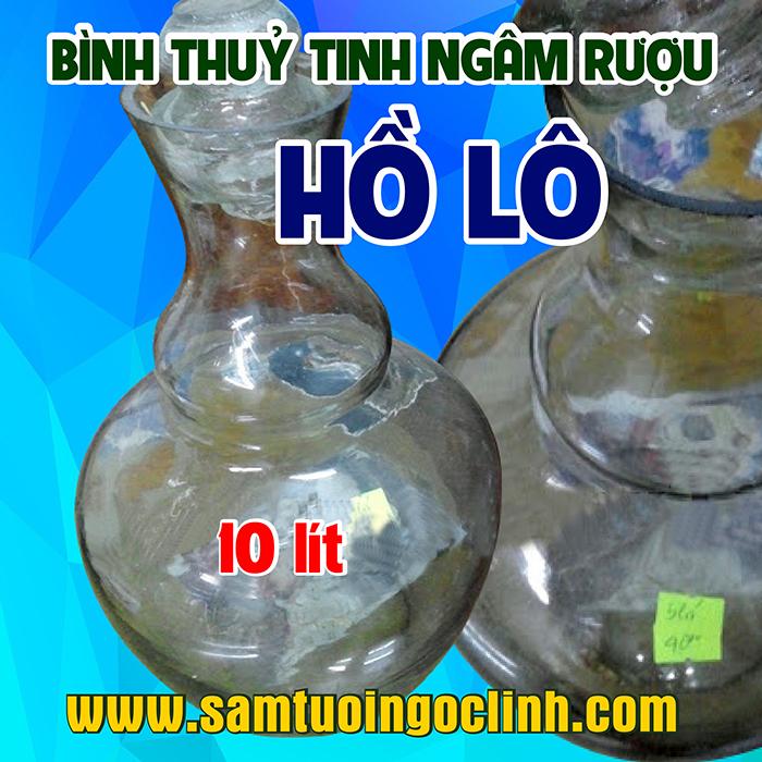 Bình Thủy Tinh Hồ Lô 10 lít Ngâm Rượu Hoa Quả