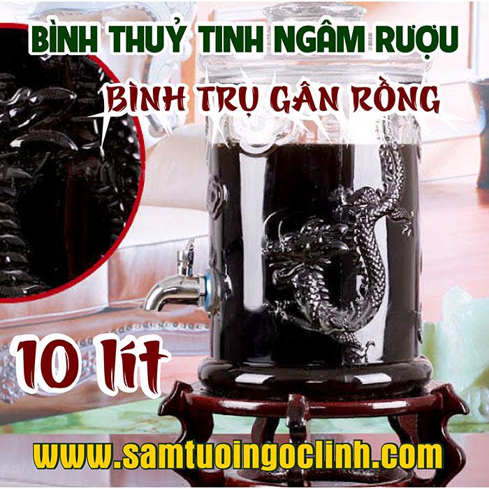 Bình Thủy Tinh Gân Rồng 10 lít Ngâm Rượu Hoa Quả