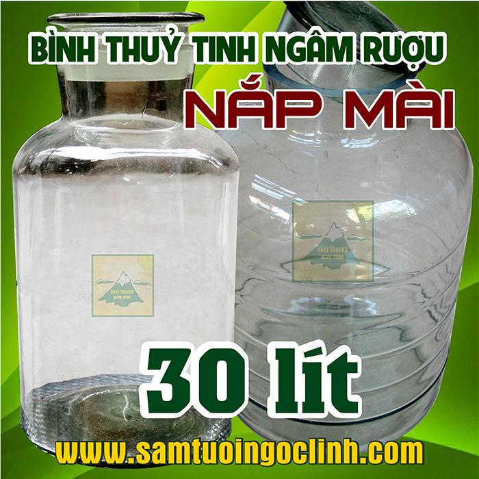 Bình Thủy Tinh Nắp Mài 30 lít Ngâm Rượu Hoa Quả Nắp Mài