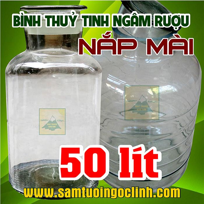 Bình Thủy Tinh Nắp Mài 50 lít Ngâm Rượu Hoa Quả Nắp Mài
