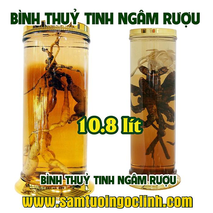 Bình Thủy Tinh Rượu Sâm 10.8 lít Kiểu Dáng Đẹp