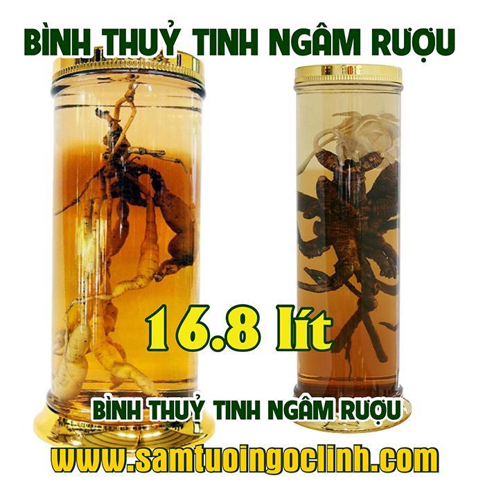 Bình Thủy Tinh Rượu Sâm 16.8 lít Kiểu Dáng Đẹp