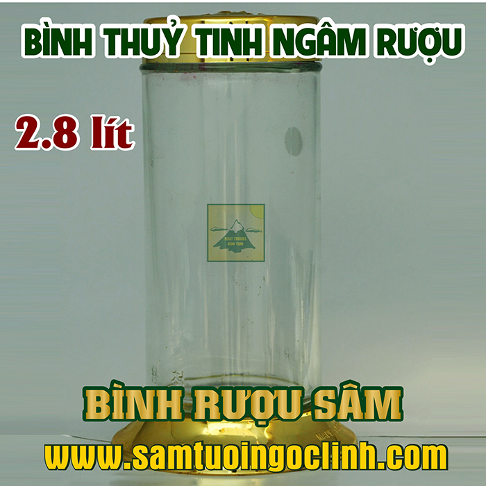 Bình Thủy Tinh Rượu Sâm 2.8 lít Kiểu Dáng Đẹp
