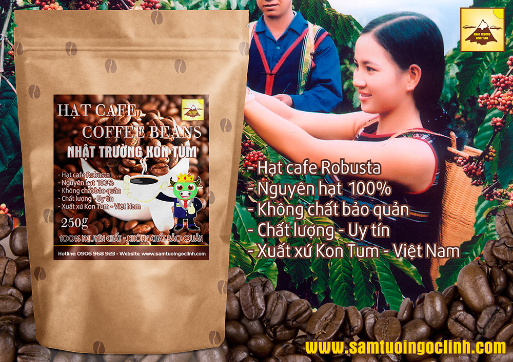 hat cafe robusta nguyen chat kon tum 1