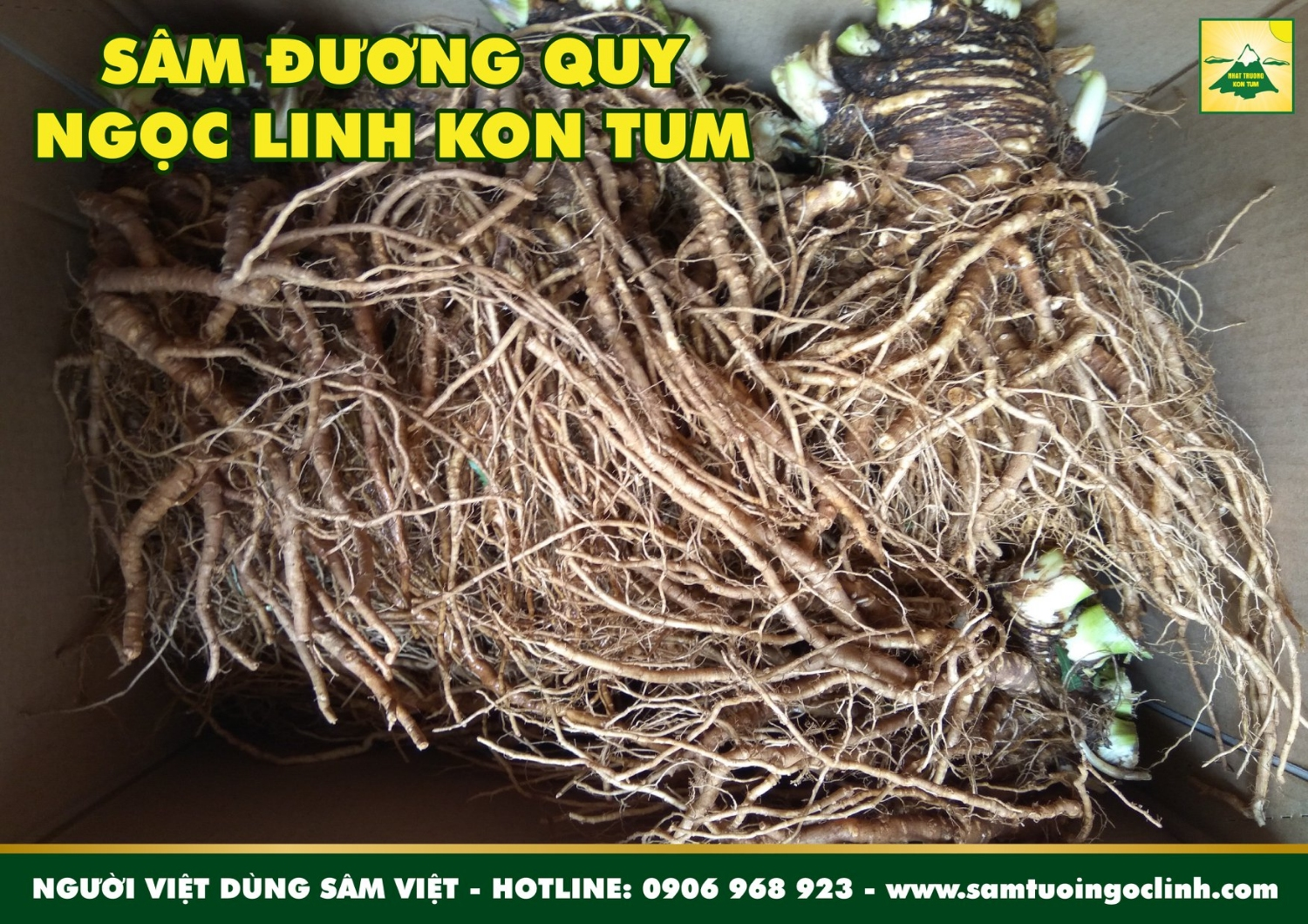 sam duong quy tuoi