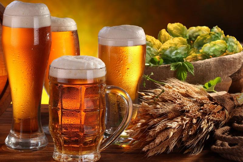 Rượu bia là thức uống không thể thiếu trong bữa tiệc của người Việt.