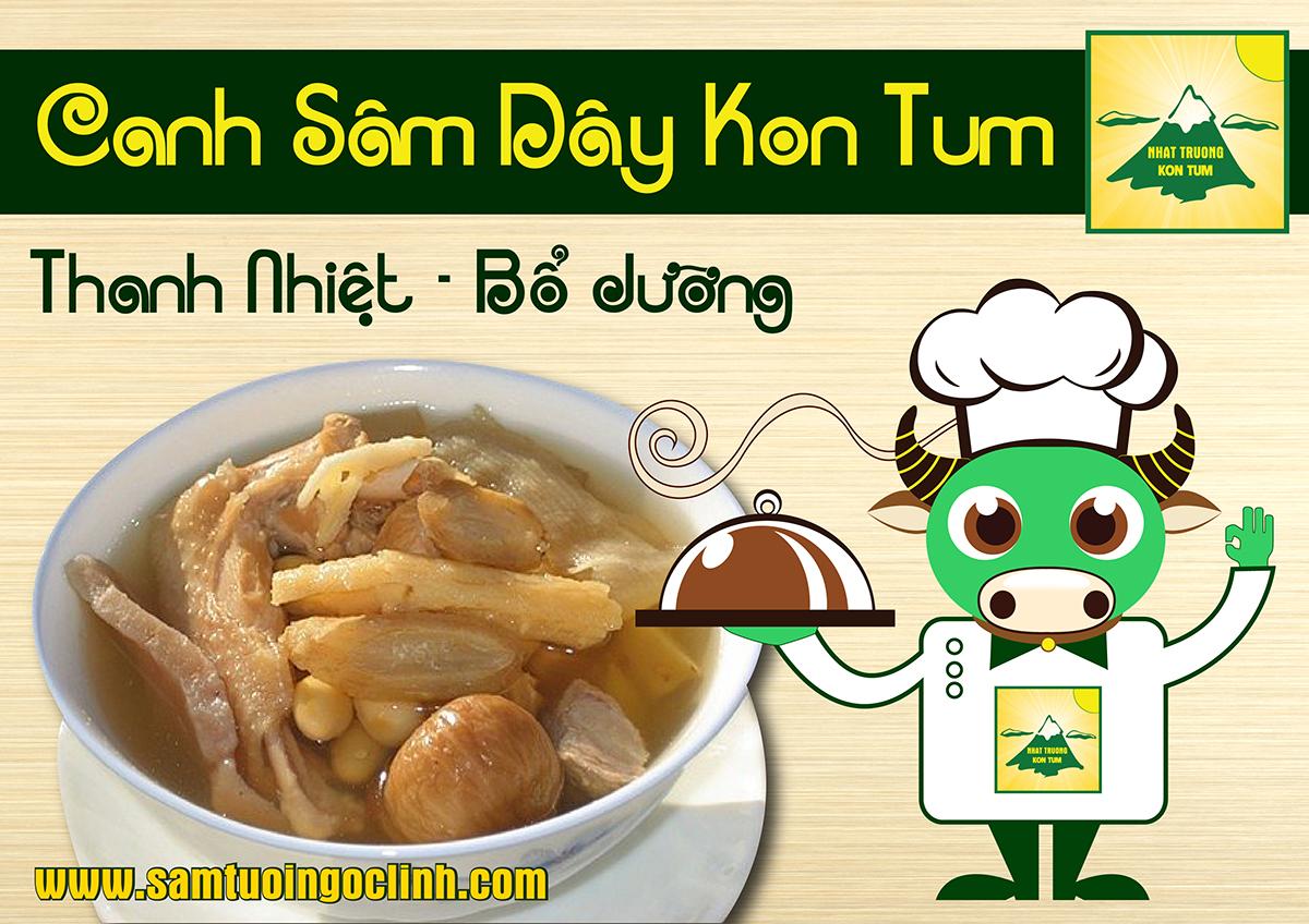 Canh Sâm Dây Kon Tum (Hồng Đẳng Sâm hay Đảng Sâm)