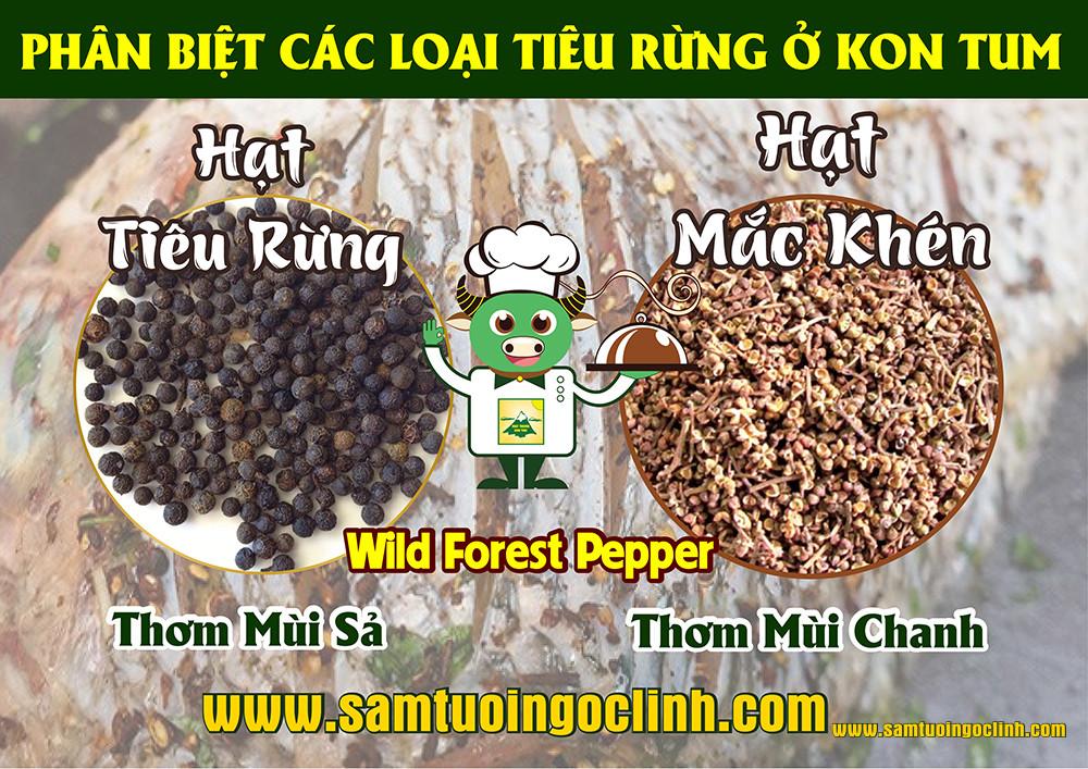 Tiêu rừng có hai loại tại tỉnh Kon Tum với hương vị lạ khiến du khách mê mẩn