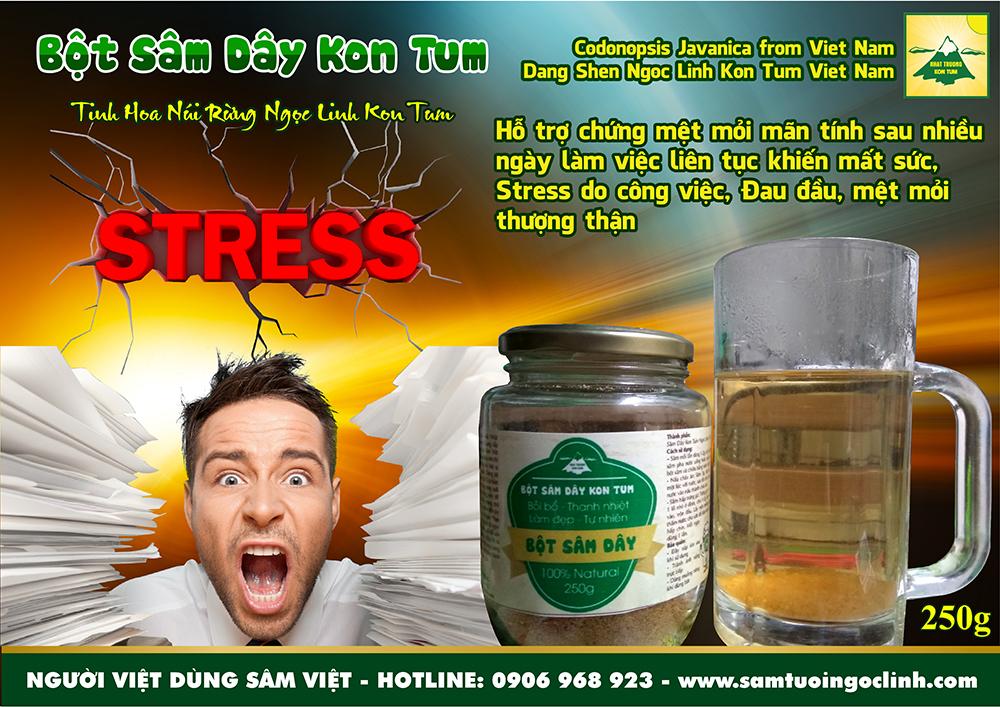 sâm dây đảng sâm mệt mỏi stress (1)